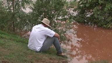 Famílias são retiradas das casas em Querência do Norte e o pasto está debaixo d´água - No Paraná TV você vai ver as consequências de tanta chuva na região e em todo o estado.
