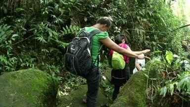Caminhada da Natureza é realizada em distrito de Resende, RJ - Participantes percorreram percurso de 10 km pela Serrinha do Alambari; atividade ofereceu prática de atividade física em meio a belezas naturais.