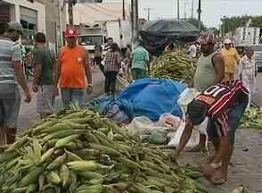 Caruaru registrou grande movimento em vendas de milho e lenha - Acender a fogueira e assar milho são algumas das tradições das festas juninas.