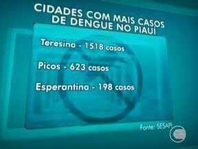 Casos de dengue em Teresina aumentam 4,3% este ano - Casos de dengue em Teresina aumentam 4,3% este ano