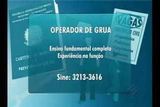 Confira as vagas de emprego no Bom Dia Pará desta terça-feira (15) - Há oportunidades para estudantes e profissionais.