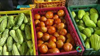 Tomate e abobrinha tem queda de preço nesta semana no Ceasa de Curitiba - Veja o que subiu de preço.
