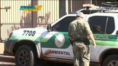 Fábrica clandestina de chumbo é descoberta em Londrina - Dono terá 15 dias para dar destinação correta ao material.