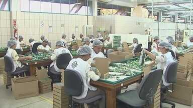 No Acre, fábrica de preservativos usa látex nativo como matéria-prima - Produção é distribuída para todo o país e ajuda a melhorar a qualidade de vida dos seringueiros do estado.