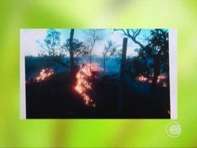 Ibama registra quase mil focos de incêndios em todo o Piauí - Ibama registra quase mil focos de incêndios em todo o Piauí