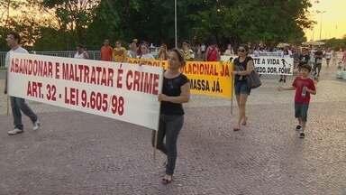 População realiza marcha da defesa de animais em Manaus - Mobilização nacional que pede o aumento da pena para crimes cometidos contra animais.