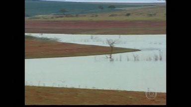 Nível do lago Furnas continua baixo mesmo com chuvas - Devido a isso, a criação de peixes e a agricultura ainda enfrentam problemas.