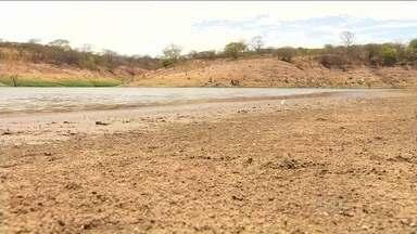 Estiagem coloca reservatórios do Ceará na situação mais difícil das últimas quatro décadas - Os 149 açudes monitorados pela companhia de recursos hídricos do estado estão, em média, com 30% da capacidade.