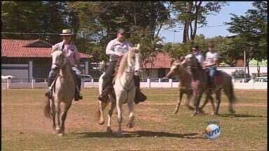Cavalhada acontece neste sábado em Franca, SP - Festa folclórica tem entrada gratuita e será no Parque Fernando Costa.