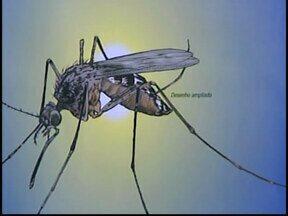 Morre em Itaúna homem que estava internado no CTI com malária - Ele estava internado no Hospital Manoel Gonçalves na cidade. Secretaria de Saúde confirmou doença da vítima que viajou para a África.