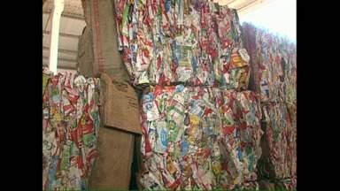 Reciclagem: CMTU e cooperativas divergem sobre aumento na venda de materiais - A prefeitura comemora aumento na venda dos recicláveis, enquanto as cooperativas dizem que o volume de lixo coletado diminuiu e a renda dos catadores também. Uma central de reciclagem está sendo criada para melhorar o sistema em Londrina.