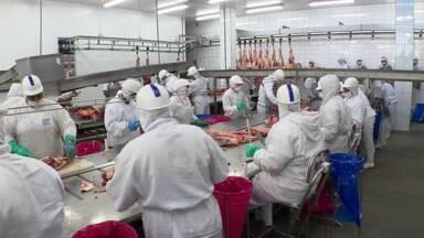 Porteiras abertas para a pecuária do Paraná - Frigoríficos paranaenses vão se beneficiar com o embargo russo a produtos de outros países, isto porque novas indústrias daqui estão autorizadas a exportar carne para a Rússia