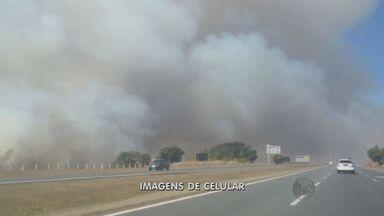 Incêndio em canavial assusta moradores de Limeira - Fogo foi controlado por funcionários de uma usina que é dona da área