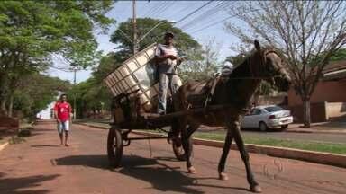 IBGE divulga estimativa da população das cidades brasileiras - No Paraná, os números mostram que as pequenas cidades são maioria e mantém estruturas administrativas de cidade grande
