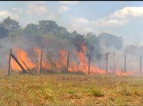 Maior parte das queimadas no Brasil estão concentradas no TO e em outros três estados - Maior parte das queimadas no Brasil estão concentradas no TO e em outros três estados