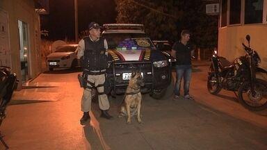 Cães farejadores ajudam Polícia Rodoviária em operação na BR-060 - Na viagem de Goiânia para Fortaleza, um homem levava 15kg de crack dentro de duas malas. O passageiro apresentou documento falso, mas logo foi descoberto pelos policiais.