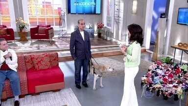 Cão-guia vai se aposentar após oito anos de trabalho - Simon é o cachorro do Alberto, que é deficiente visual e fala sobre o trabalho do cão