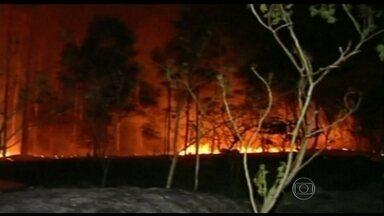 Brasil registra mais de 17 mil focos de incêndio em setembro - Estiagem prolongada, ventos fortes e tempo seco estão contribuindo para o aumento de queimadas em todo país. Segundo o INPE, Tocantins, Maranhão, Cuiabá e Mato Grosso concentram cerca de 602% dos focos de incêndio.