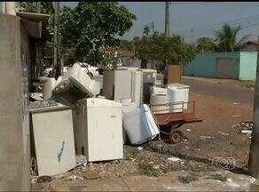 Comércio de Palmas descumpre regras da prefeitura quanto ao descarte de lixo - Comércio de Palmas descumpre regras da prefeitura quanto ao descarte de lixo
