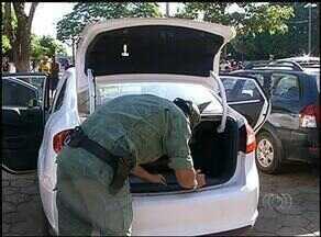Em Araguaína, casal encontra cobra dentro do carro ao estacionar no local de votação - Em Araguaína, casal encontra cobra dentro do carro ao estacionar no local de votação