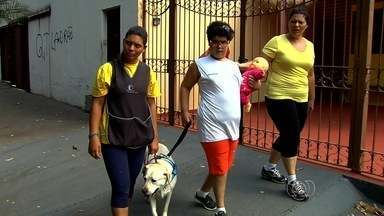 """Cachorros ajudam no desenvolvimento de crianças especiais em Goiânia - Reportagem faz parte da série """"Amigo Fiel"""", exibida ao longo da semana no JA 1ª edição."""