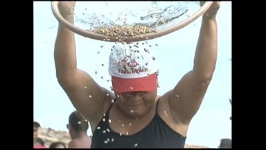 Trabalhadores de Tiquaruçu se preparam para a 'Bata do feijão' - A bata é uma dança ritmada. Através dela os agricultores festejam a alegria de mais uma colheita.