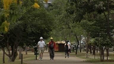 Secretaria de Saúde intensifica dedetização no Parque Flamboyant em Goiânia - Órgão confirmou sexto caso da doença. Jovem tem 22 anos e está internada em uma unidade de saúde da capital.