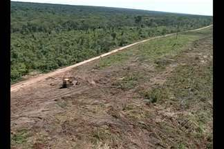 Imazon diz que área desmatada na Amazônia aumentou mais de 400% - A Secretaria Estadual de Meio Ambiente disse que vem intensificando o combate ao desmatamento no Pará com trabalhos desenvolvidos em áreas de grilagem e especulação fundiária.