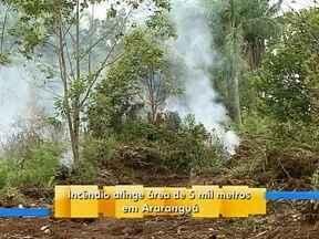 Área atingida por incêndio em Araranguá equivale a 10 hectares - Área atingida por incêndio em Araranguá equivale a 10 hectares