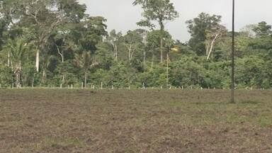 Em Cacoal, a implantação do aterro sanitário vem causando transtornos - Ministério Público pediu novos estudos da área.