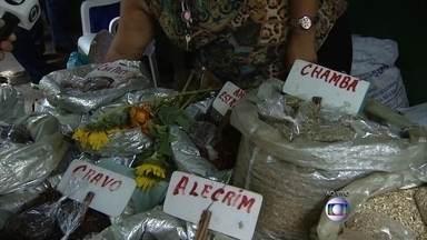 Confira receitas de simpatias para conseguir coisas boas no ano novo - Comerciante Conceição Tavares, do Mercado de São José, ensina várias receitas de simpatias com ervas.