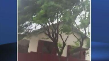 Morador registra chuva forte que atingiu Três Pontas, MG - Morador registra chuva forte que atingiu Três Pontas, MG