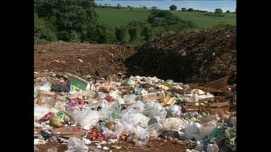 O lixo em Tamarana não tem nenhum tratamento - Há 40 anos, o lixo da cidade é enterrado sem receber nenhum tipo de tratamento. O resultado disso é um lixão a céu aberto que fica bem próximo às plantações.