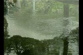 Chuva característica do inverno amazônico inspira artistas - Em Belém, artistas se inspiram na água para compor músicas e fazer fotografias, por exemplo.