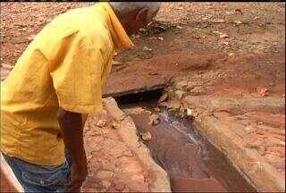Lixo acumulado e vazamento de água aumentam a quantidade de mosquitos em Barbalha - Moradores cobram recolhimento do lixo na cidade.