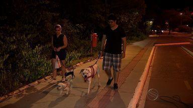Escuridão preocupa quem anda pela Avenida Beira Mar em Aracaju - Escuridão preocupa quem anda pela Avenida Beira Mar em Aracaju.