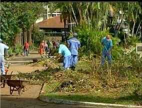 Praça de Nova Friburgo, no RJ, tem novo visual após corte e poda de árvores - Praça de Nova Friburgo, no RJ, tem novo visual após corte e poda de árvores.