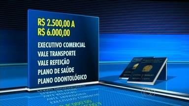 Veja as vagas de emprego em Goiânia - Dentre as oportunidades estão vagas para executivo comercial.