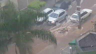Árvores caem sobre carros e ruas alagam após forte chuva em Goiânia - Enxurrada invadiu casas e moradores retiraram móveis e eletrodomésticos. Na BR-153, motoristas tiveram que reduzir a velocidade e acender faróis.