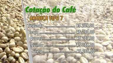 Café conilon fecha a semana com queda no preço, no ES - Confira a cotação do café no Espírito Santo.