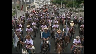 Encontro de interessados em mulares atrai dezenas de aficionados em Feira de Santana - Mulares são os animais que resultam do cruzamento do jumento com a égua, ou do cavalo com a jumenta.