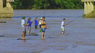 Após Piracema, pescadores voltam ao Mogi Guaçu em Pirassununga, SP - Especialistas dizem que, apesar de rio cheio, situação ainda é preocupante.