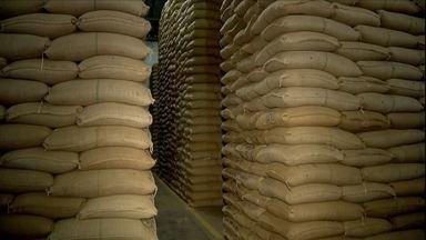 Mercado do café arábica volta a crescer no sul de Minas Gerais - Baixos preços paralisaram os negócios por várias semanas.