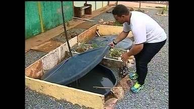 Escola inventa sistema para economizar água, em Ipameri - Além disso, população tomou uma série de medidas para deixar unidade mais atrativa para crianças.