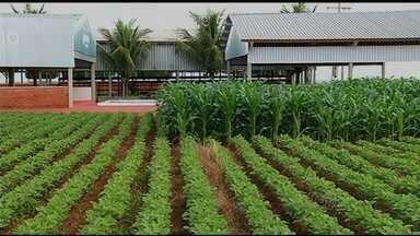 Tecnoshow 2015 vai debater melhor aproveitamento da água nas lavouras - Feira agrícola ocorre entre 13 e 17 de abril, em Rio Verde.