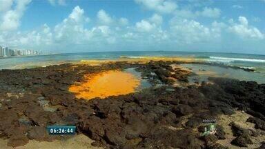 Óleo vegetal é retirado de trecho da Praia do Mucuripe, em Fortaleza - Praia foi isolada, pois óleo pode fazer mal a saúde de banhistas. Mancha não deve causar impactos ambientais graves à fauna.