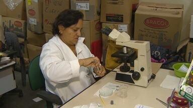 Ministério da Saúde divulga balanço casos de dengue e da febre chikungunya do Norte - O Ministério da Saúde divulga um balanço sobre a situação da dengue e da febre chikungunya na região norte.