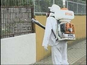Prefeitura de Chapecó divulga último boletim sobre os casos de dengue no município - Prefeitura de Chapecó divulga último boletim sobre os casos de dengue no município