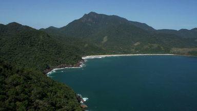 Serra Da Bocaina: O Paraíso Achado