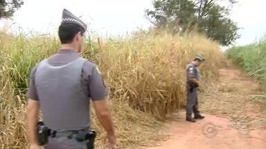 Polícia prende detento que fugiu da penitenciária de Andradina - A polícia de Pereira Barreto (SP) prendeu na manhã deste domingo (31) um detento que fugiu na noite deste sábado (30) da penitenciária de Andradina (SP). Na ocasião, dois presidiários acabaram fugindo do local.